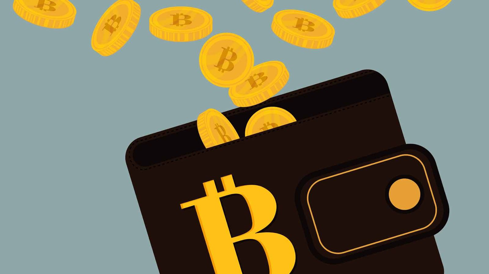5 Categories Of Bitcoin Wallets You Need To Know