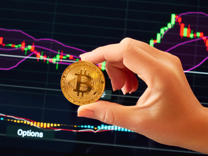 What Are The Bitcoin Fundamentals?