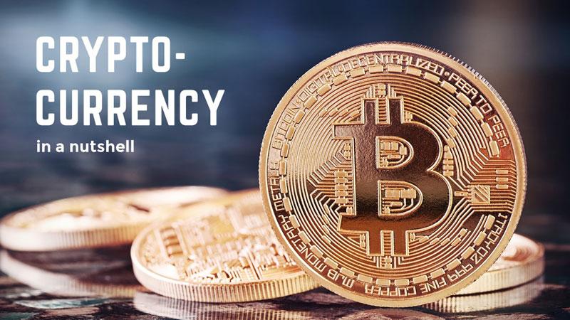 Cryptocurrencies in a Nutshell